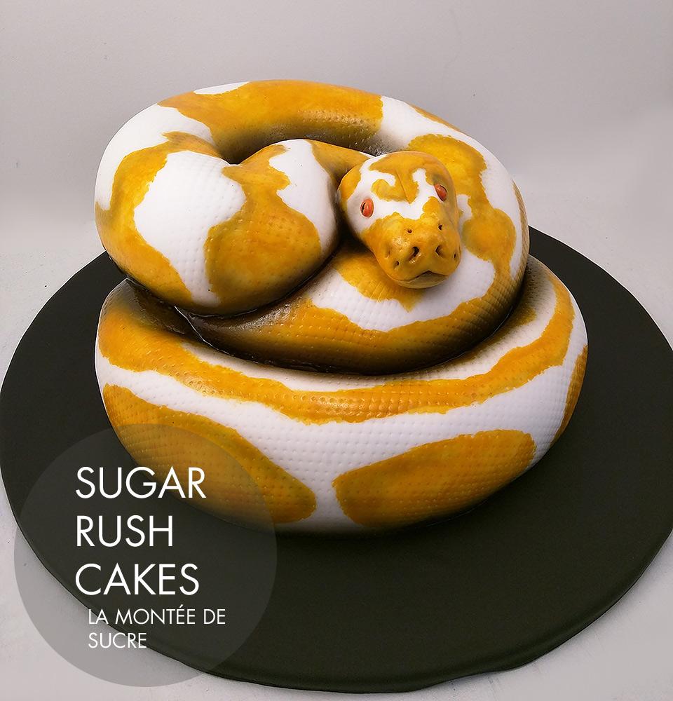 Albino Python Cake